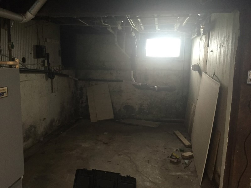 cleveland mold remediation gallery photos of black mold removal