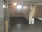 Castalia, OH Basement Mold Remediation