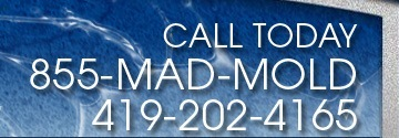 MAD Cleaning, M.A.D. Cleaning LLC