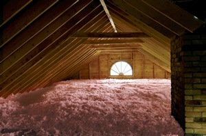 Cleveland attic mold removal ventilation cleveland attic mold solutioingenieria Image collections
