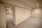 Cleveland basement mold