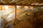 Cleveland crawl space mold